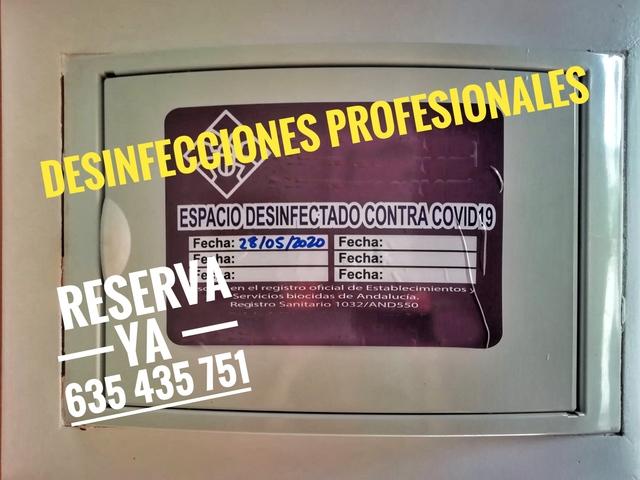 Bar para solteros Sevilla sexo espordica